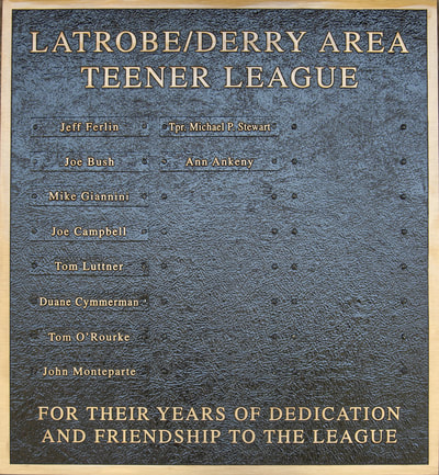 teener league baseball latrobe